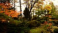 Fukumitsu Park.jpg