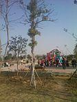 Funing Cultural Park2.jpg