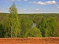G. Nizhnyaya Tura, Sverdlovskaya oblast' Russia - panoramio - Oleg Seliverstov (8).jpg