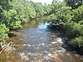 GA US 221 Withlacoochee River north03.jpg