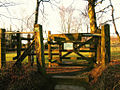Gate to ashdown forest - adjustments.jpg