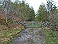 Gateway to Penninghame Forest - geograph.org.uk - 172752.jpg