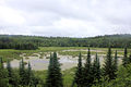 Gfp-minnesota-voyaguers-national-park-beaver-pond-overlook.jpg