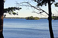 Gfp-new-york-wellesley-island-state-park-st-lawrence-through-the-trees.jpg