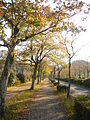 Gifu Prefectural Museum E01.JPG
