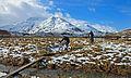 Glen Affric XC - Athnamulloch (13356269303).jpg