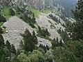 Gorges de Núria des del cremallera P1030258.JPG
