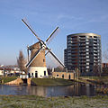 Gouda - Mallemolen nov 2010.jpg