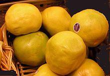 Pompelmo (Citrus paradisi)