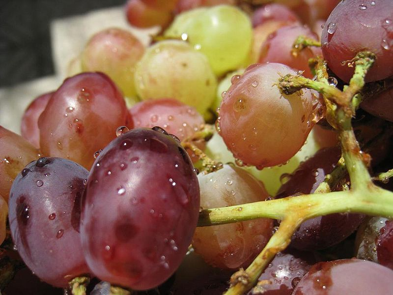 http://upload.wikimedia.org/wikipedia/commons/thumb/5/55/Grapes_Angoor.JPG/800px-Grapes_Angoor.JPG