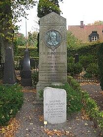 Grave of Christian Wilhelm Blomstrand in lund sweden.JPG