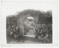 Gray gardens robert carmer hill house3.tif