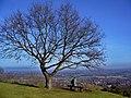 Great Malvern - panoramio (13).jpg