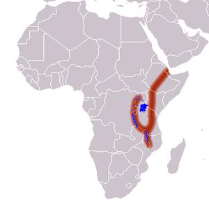 Gran Valle del Rift
