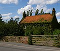 Green Cottage, Broughton High Street - geograph.org.uk - 1420160.jpg