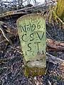 Grenzstein Bachbett Korntaler Weg CSV Nr 96.JPG
