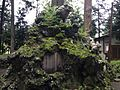 Guardian lions of Subashiri Sengen Shrine 2.JPG