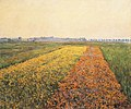 Gustave Caillebotte - The Yellow Fields at Gennevilliers.JPG