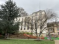 Hôtel Ville - Le Plessis-Robinson (FR92) - 2021-01-03 - 1.jpg
