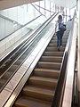 HK 荃灣政府合署 Tsuen Wan Government Offices interior escalators n visitor Jan 2017 Lnv2.jpg