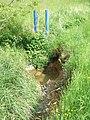 Hainbach am Kolk blaue Plastikrohre.jpg