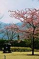Hakone (6969727892).jpg