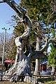Harumachi keyaki 20121219 - panoramio.jpg
