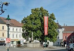 Hauptplatz, Brunnen mit Prangermandl-Statue, Ybbs.jpg