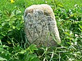 Hay lot marker stone, North Meadow NNR, Cricklade - geograph.org.uk - 417335.jpg