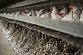 He egg industry in Israel 03.jpg