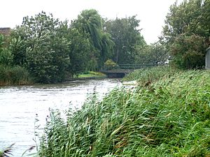 Rotte (river) - Image: Holvoeterbrug