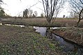 Hoppenbeek-Ammersbeek.jpg