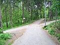 Hostivařský lesopark, rozcestí pod Šancemi.jpg