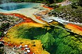 Hot Springs in West Thumb Geyser Basin.jpg