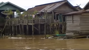 Kumai River - House on Kumai river, June 2015