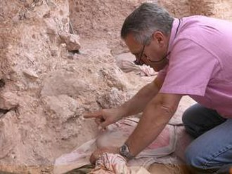 Max Planck Institute for Evolutionary Anthropology - Jean-Jacques Hublin at Jebel Irhoud (Morocco), pointing to the crushed human skull (Irhoud 10) whose orbits are visible just beyond his finger tip.
