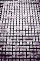 Ice Cubes (4330423566).jpg
