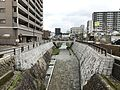 Ichinosakagawa River from Chitosebashi Bridge (east).jpg