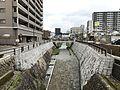 Ichinosakagawa River from Chitosebashi Bridge (east).jpg