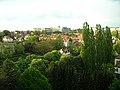 Ijsvogellaan 23 b33 Watermaal - panoramio (2).jpg