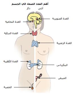 جراحة الغدة الدرقية