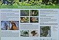 Informationstafel Klosterwald Maria Eich.jpg