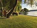 Insel Reichenau Image1.jpg