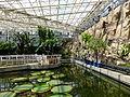 Inside of Greenhouse, Jindai Botanical Garden 1.jpg