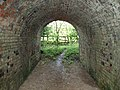Inside the footpath tunnel - geograph.org.uk - 436440.jpg
