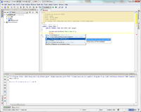 IntelliJIDEA 9 Community Screenshot