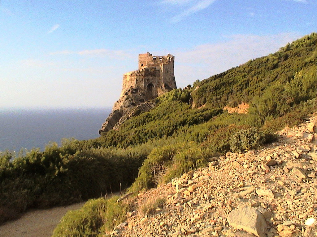 Isola Gorgona 6