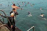 JTF Guantanamo Members Participated in the 'Across the Bay Swim' DVIDS229839.jpg