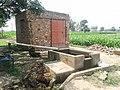 Jagga Kang di Motor, Rolu Majra, 140102, Rupnagar, Punjab, india - panoramio.jpg