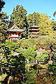 Japanese Tea Garden (San Francisco) - DSC00175.JPG